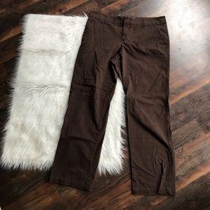 Sonoma Brown Boot Cut Pants